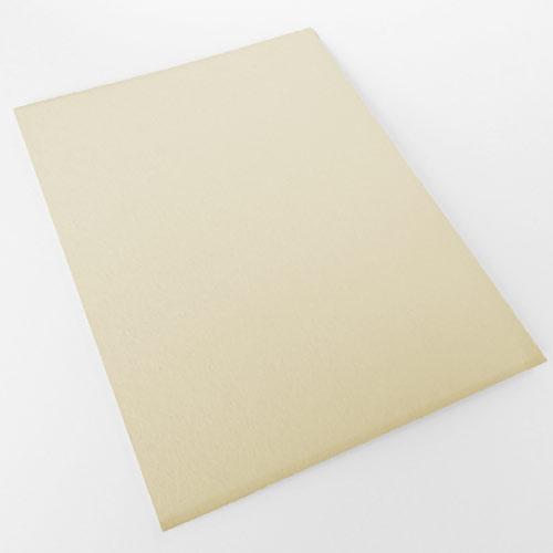 Carton Paja